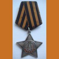 Орден Славы №502953