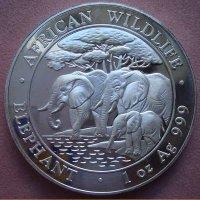 Монета Somali Repablic 2013 год