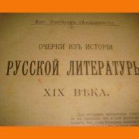 Очерки из истории русской литературы 19 в . 1903 г .
